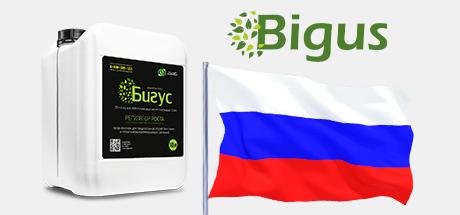 Preparation Bigus Vigus enters the Russian market
